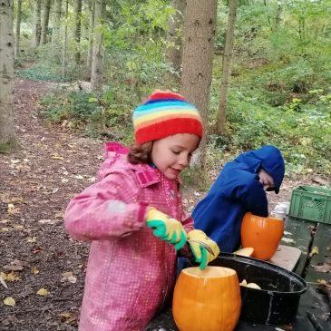 Vorschüler im Wald