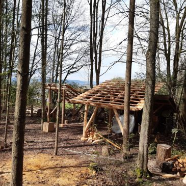 Baumaßnahmen im Wald