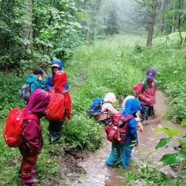 """Expedition im Michelbacher """"Regenwald"""""""